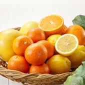 その他柑橘類